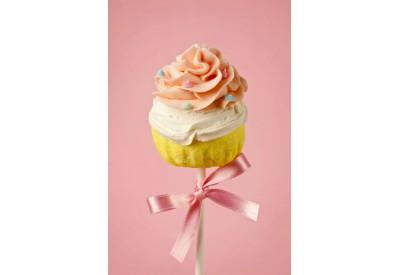 Randi's Candy Cake Pop's